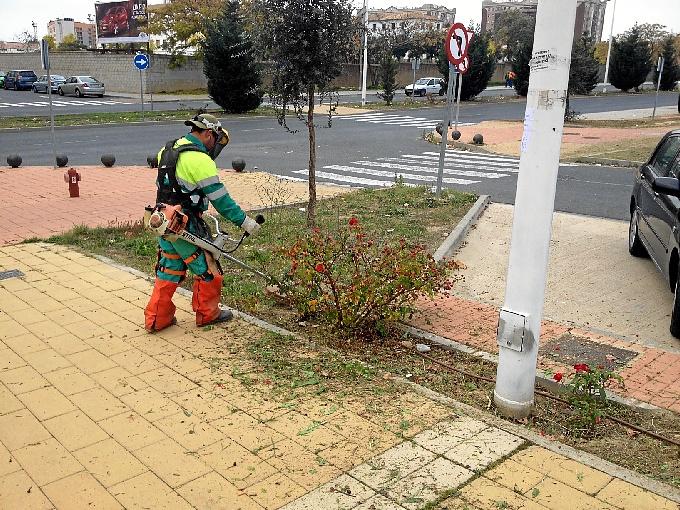 Un operario llevando a cabo tareas de mantenimiento en una zona ajardinada.