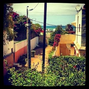 Las vistas desde su casa.