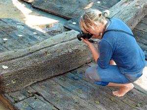 Uno de los técnicos realiza el trabajo de registro fotográfico de las maderas. / Foto: IAPH.
