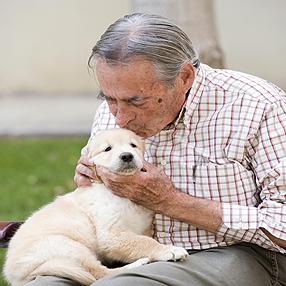 El perro puede ser una gran compañía para los mayores. / Foto: formacionprofesionales