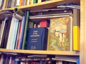 Las obras literarias de autores onubenses ha sido difundida entre las publicaciones sobre Huelva en los últimos años.