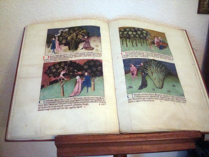 libro francis42