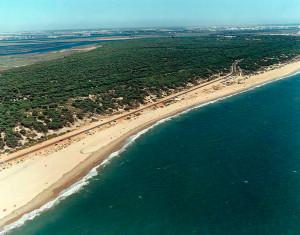 Playa de La Bota en Punta Umbría. / Foto: Ministerio de Medio Ambiente.