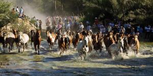 A León le gusta fotografiar ferias y eventos tradicionales, como la saca de las yeguas.