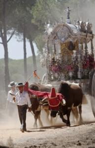 'Rocío, jubileo de luz' está compuesta por 66 instántaneas de la romería.