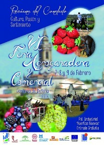 Cartel de la Feria de Rociana.