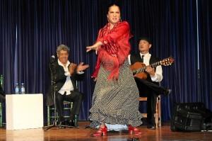 Ciclo Conocer el flamenco Cajasol