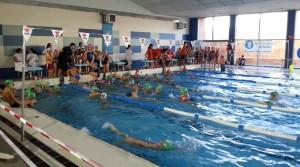 El VII Trofeo San Sebastian de Escuelas de Natación fue un éxito.