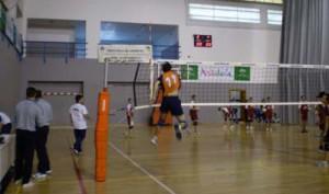 El voleibol será el gran protagonista en Aracena el próximo domingo.