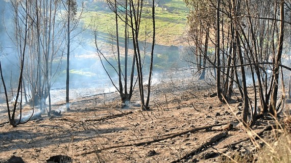 Restablecida la circulación en la N-435 y estabilizado el incendio en Zalamea