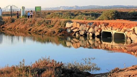 Iniciada una campaña de voluntariado para limpiar las Salinas del Duque de Ayamonte