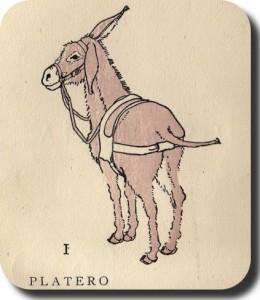 Platero2