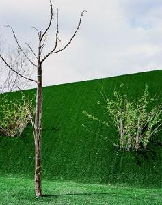 Una muestra de sus paisajes mínimos. / Foto: Jorge Yeregui.