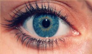El Glaucoma es una enfermedad ocular irreversible sin síntomas aparentes. / Foto: Saludhoy.