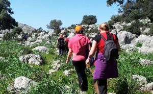 Los Chorros de Ollarascos, en la Sierra de Huelva, es el destino de esta ruta senderista.