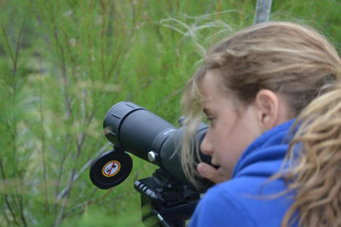 Los jóvenes del entorno del Paraje Natural Marismas del Odiel han podido acercarse a esta Reserva de la Biosfera y familiarizarse con el mundo de las aves a través de actividades con juegos y talleres.