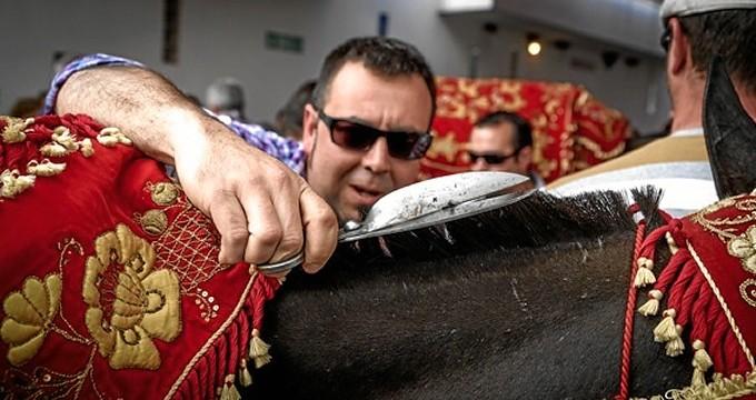 Las bestias del romero en Berrocal