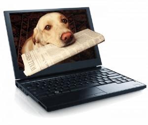 perro_ordenador