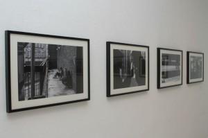La exposición ha tenido muy buen acogida. / Foto: Moisés Núñez.