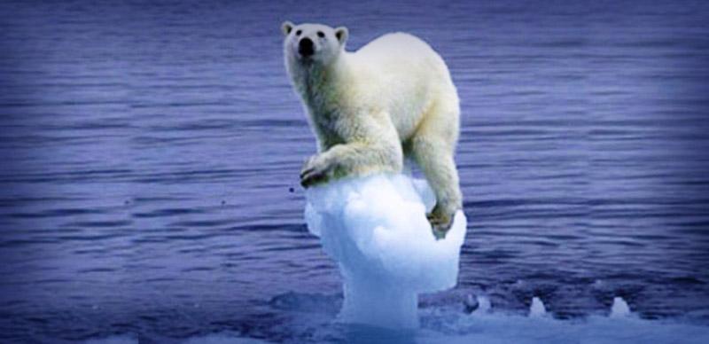 Lucha contra el cambio climático.