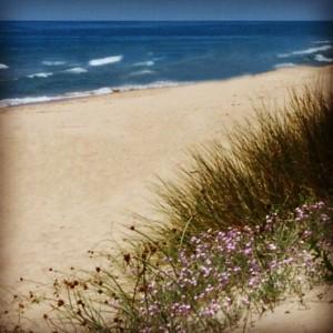 Las playas de Lepe, todo un paraiso. / Foto: Patronato de Turismo de Huelva.