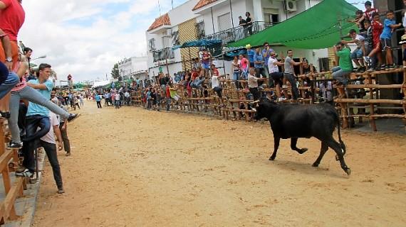 San Juan ultima la seguridad de sus Capeas 2015
