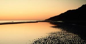 Los espacios protegidos y las playas vírgenes han fascinado a la periodista inglesa. / Foto: donana.es.