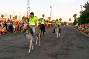Llegada a meta de los cinco burros participantes en la carrera con motivos de las fiestas del Carmen.