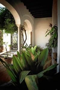 Visita al Palacio de Medina Sidonia.
