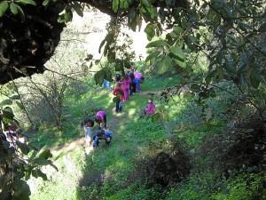 Actividad en el Parque Moret.