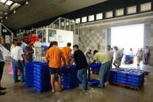 Los mariscos bivalvos supone el 6% de las capturas isleñas. / Foto: Lonja de Isla Cristina.