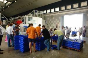 Isla también cuenta con la única fábrica de hielo para pesca de la provincia de Huelva. / Foto: Lonja de Isla.