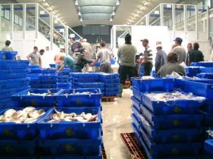 El sector pesquero cuenta con la gestión de la propia Lonja. / Foto: Lonja de Isla.