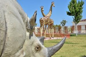 Las dos jirafas se suman a otra escultura de un rinoceronte.