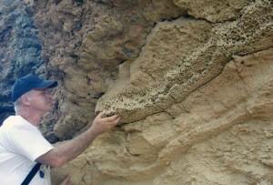 Eduardo es experto en fósiles en el Valle del Guadalquivir, en las provincias de Huelva y Sevilla.