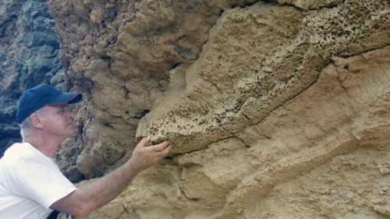 ¿Habitaron los dinosaurios la provincia de Huelva?