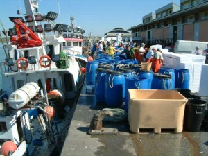 La flota pesquera isleña está compuesta por más de 200 embarcaciones.