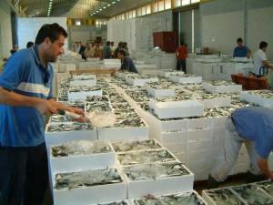 Las sardinas, un pescado importante en la Lonja. / Foto: Lonja de Isla Cristina.