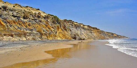 Investigan la realización de un camino en El Asperillo, un monumento natural del entorno de Doñana