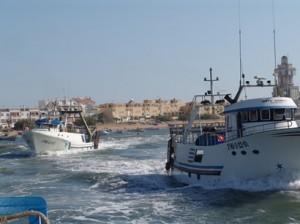 Su empresa se dedica a la pesca y comercialización de marisco.