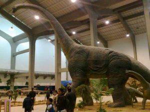 Los dinosaurios ocupan un lugar predilecto en los museos.