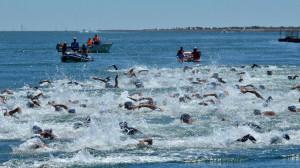 Más de 200 nadadores en la Travesía del Río Guadiana. / Foto: J. L. Rúa.