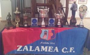 Algunos de los trofeos conquistados por el Zalamea en su historia. / Foto: J. M. Jiménez.