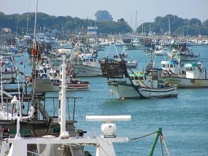 Los pescadores del sector de la chirla recibirán las ayudas por adelantado.
