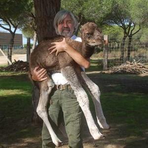 Desde muy pequeño se ha dedicado al cuidado y crianza de animales.