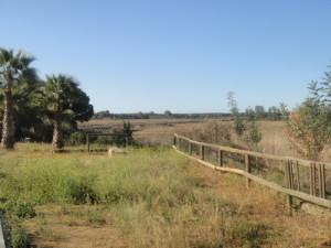 Zona de marismas en Corrales.