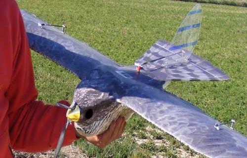 Un drone para combatir las plagas agrícolas