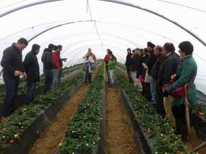 Los participantes en el seminario vieron in situ el funcionamiento de riego.