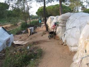Otra imagen de una acampada de los inmigrantes en Lepe. / Foto: Fermín Cabanillas.