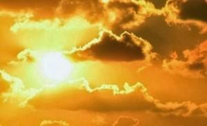 La luz natural es imprescindible para la vida de los seres vivos.